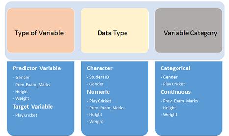 数据探索的综合指南